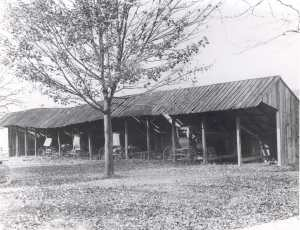 Buggies parked at the Meeting House, in an undated photo.
